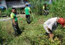 Penanaman Lahan Tidur di Sanggaria, Satgas Yonif PR 328 Tingkatkan Ekonomi Warga Perbatasan.