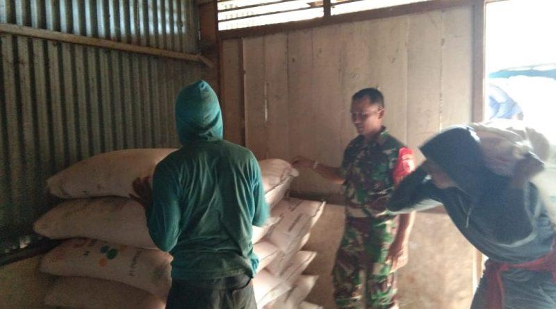 Yakinkan Pupuk Sampai di Tangan Petani, Anggota Koramil Kauman Awasi Pendistribusian pupuk Bersubsidi