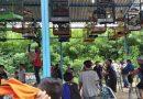 Meriahnya Lomba Burung Berkicau Dandim Cup II di Kemayoran
