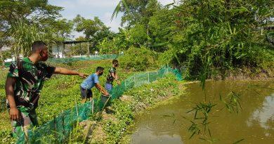 Pengelolaan Budidaya Kolam Ikan Memperkuat Ketahanan Pangan Satuan