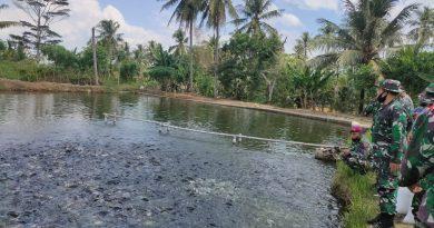 Prajurit Beruang Hitam, Koptu Mar Bambang Irawan Sukses Budidaya Ikan