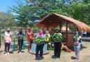 Jalasenastri Yonranratfib 2 Mar Panen Budidaya Sayuran Organik Ketahanan Pangan ditengah Pandemi