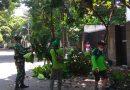 Babinsa Koramil 01/Menteng Bantu Penopingan Pohon Di Jl. Banyumas
