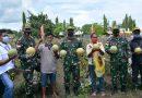 TNI Bersama Masyarakat Papua Perkuat Ketahanan Pangan