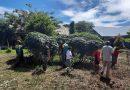 Bersama Para Siswa, Satgas Yonif MR 413 Kostrad Bersihkan SMAN 6 Skouw Jayapura