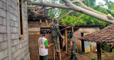 Pohon Tumbang Timpa Rumah Warga, Anggota Kodim 0802/Ponorogo Bantu Evakuasi