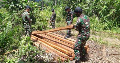 Laksanakan Patroli, Satgas Yonif 642/Kapuas Amankan Kayu Hasil Illegal Logging di Wilayah Perbatasan
