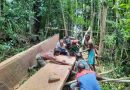 Bersama Warga Binaan Babinsa Koramil 1709-01/Yapsel Siapkan Material Pembangunan Gereja