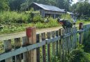 TNI Peduli Lingkungan, Babinsa Yaptim Bersama Warga Bersihkan Kampung